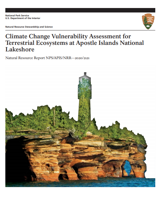 Cover of the APIS assessment