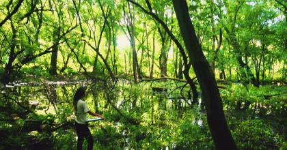 Manager with clipboard in a floodplain forest at Crosby Farm Regional Park