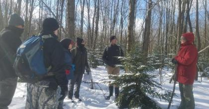 Field staff surround a red spruce.