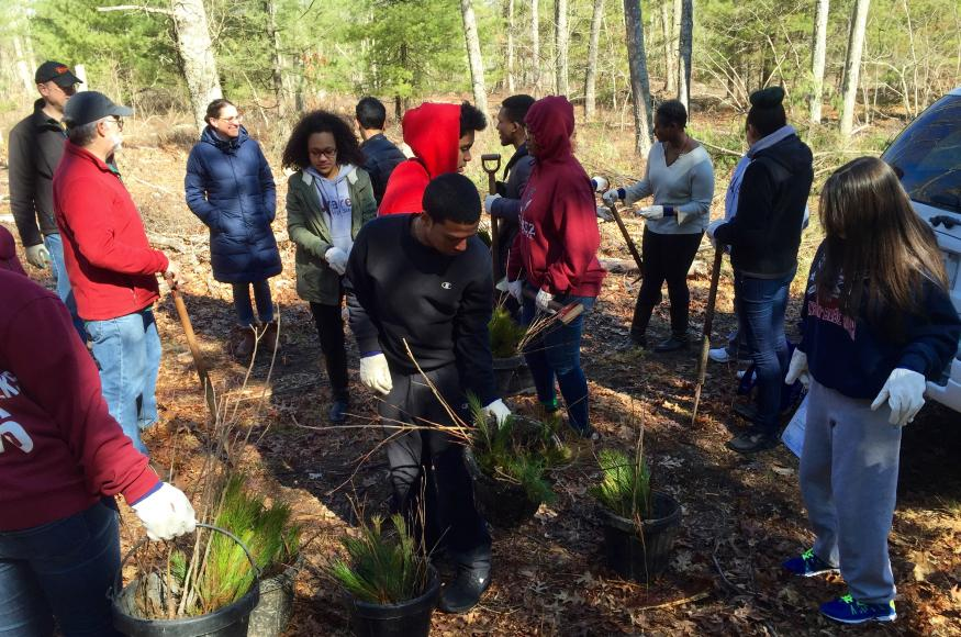a group of students planting trees in a forest
