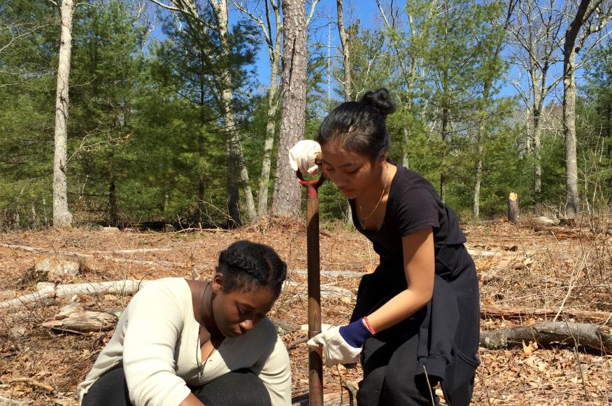 two students planting trees in a forest