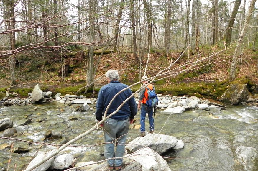 Two natural resource professionals standing on rocks near a forest stream.