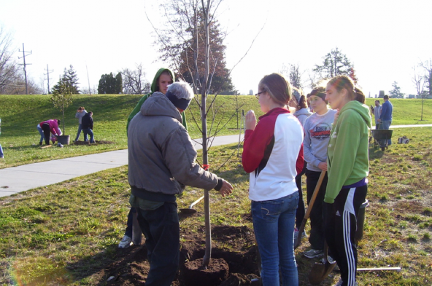 people gathered around a tree that they are planting.