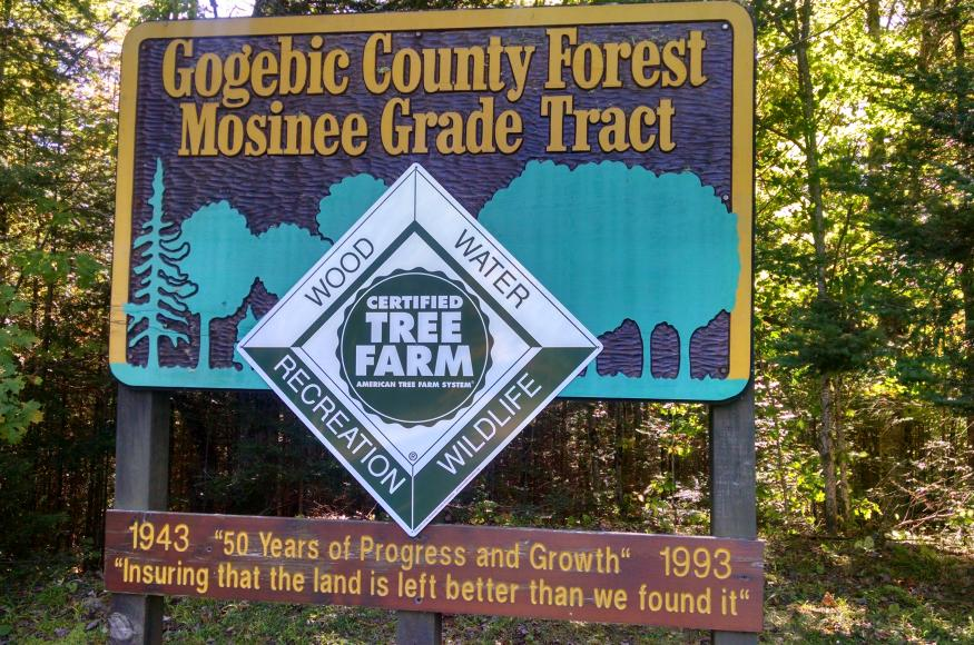Mosinee GEMS project sign.