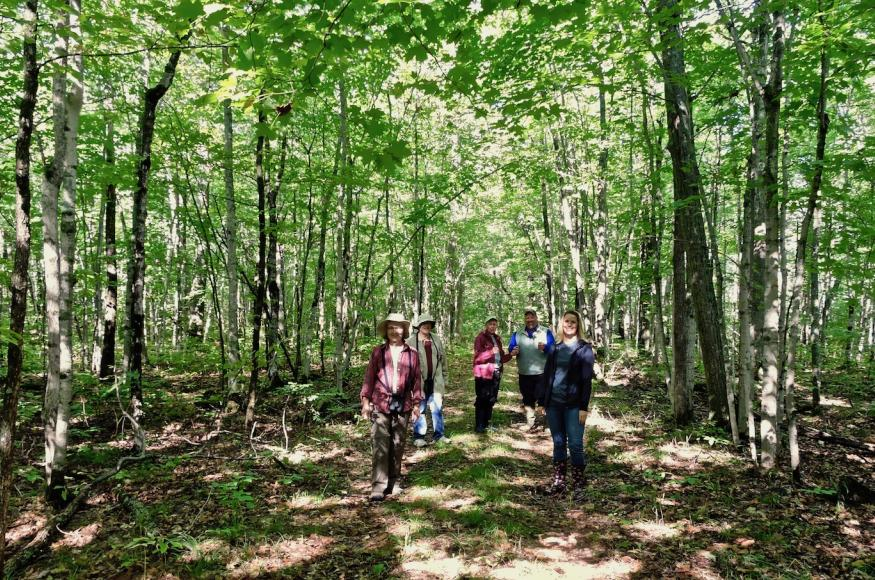 People enjoying the forest at the Emily Min Hunt Preserve