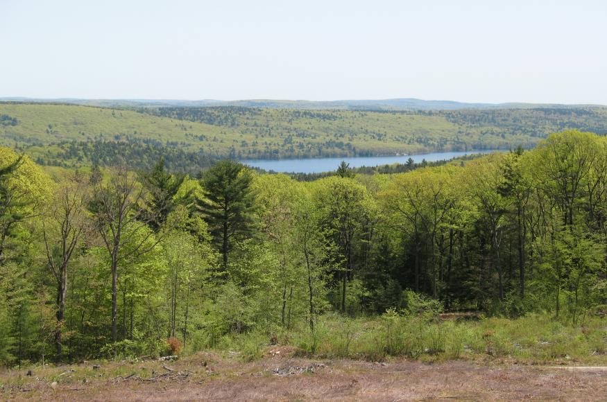 A forested landscape with a water reservoir visible in the distance.