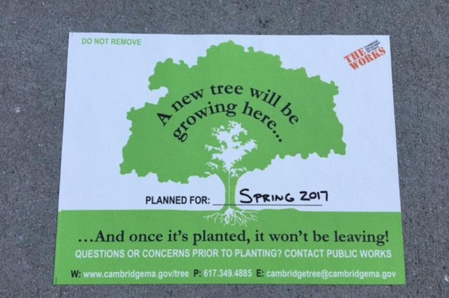 Sign that tells the public a new tree will soon be planted