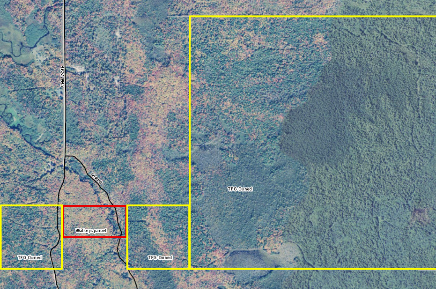 Matt Watkey's property (red outline) connects large parcels of forest land owned by Hancock Natural Resources Group (formerly owned by The Forestland Group, yellow outline).