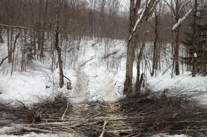 A pile of sticks in a stream in winter, used to drive large equiptment over